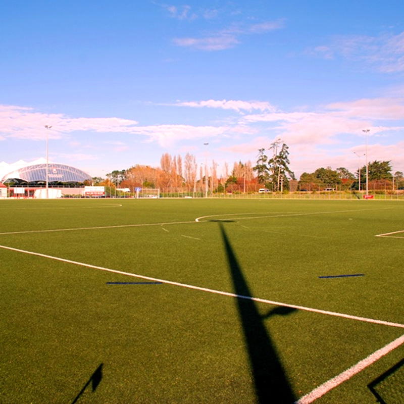 Forrest Hill, Westlake Girls High School: 6-a-side football competitions with FootballFix